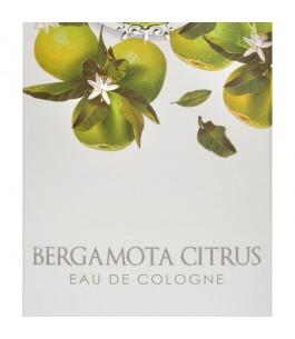 Bergamota CItrus